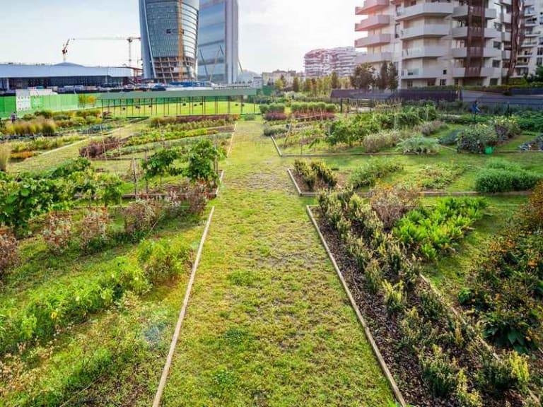 Gli Orti Fioriti a Milano CityLife aprono a cittadini e famiglie