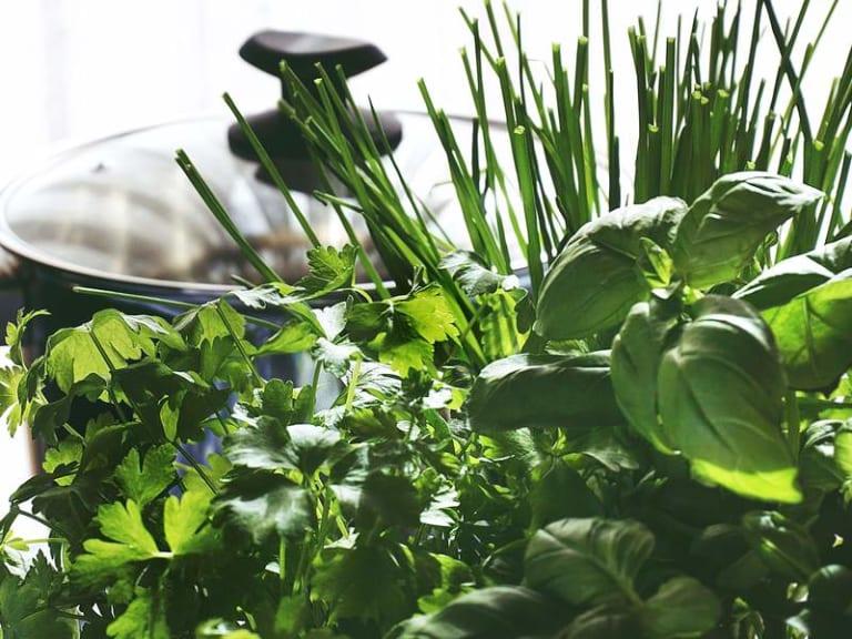 L'arte del riciclo arriva in giardino. E le aromatiche fanno boom