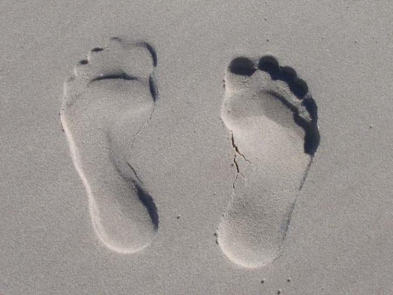 Arriva Mugo, l'assistente personale che calcola il proprio footprint