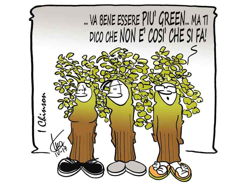greenwashing sostenibilità