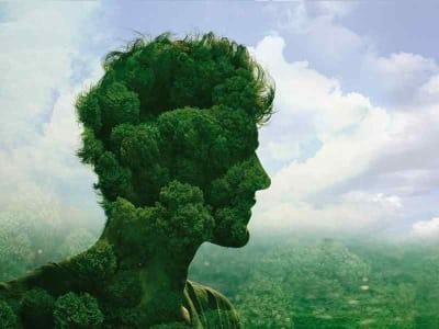 lifegate investimenti green