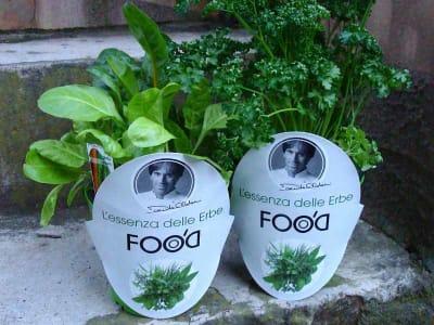 food'o erbe aromatiche oldani