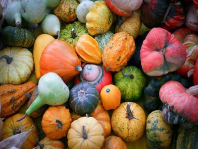 biodiversità agricola e alimentare