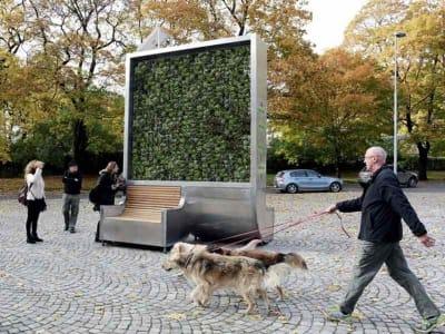 inquinamento stradale citytree