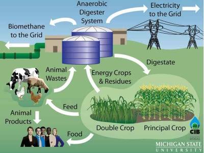 doppie colture biogas
