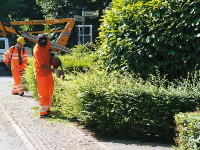 manutenzione verde pubblico