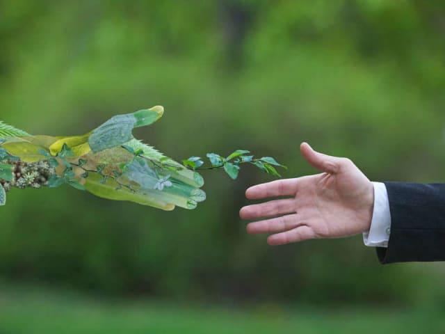 hitech sostenibile - consumatori e sostenibilità