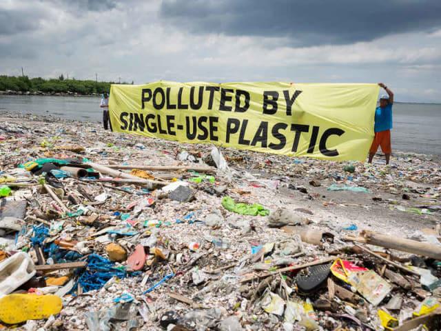 inquinamento plastica - Plastics for Change
