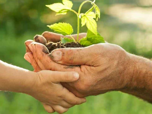 Agricoltura sostenibile per un futuro sostenibile