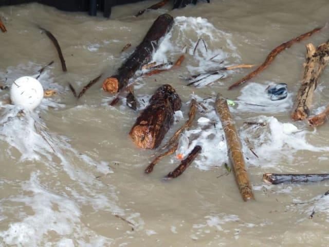 inquinamento chimico delle acque italiane
