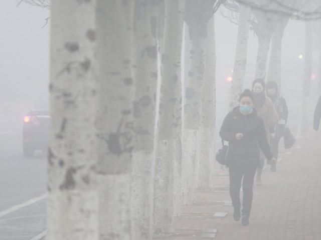 morti premature inquinamento