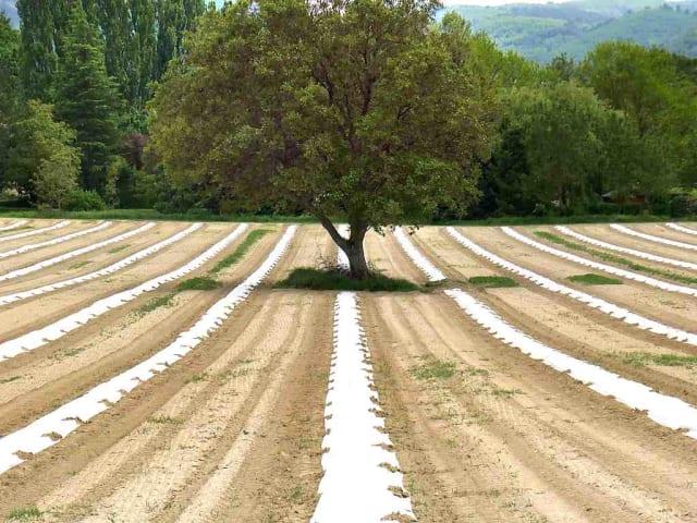 agroecologia - ae4eu