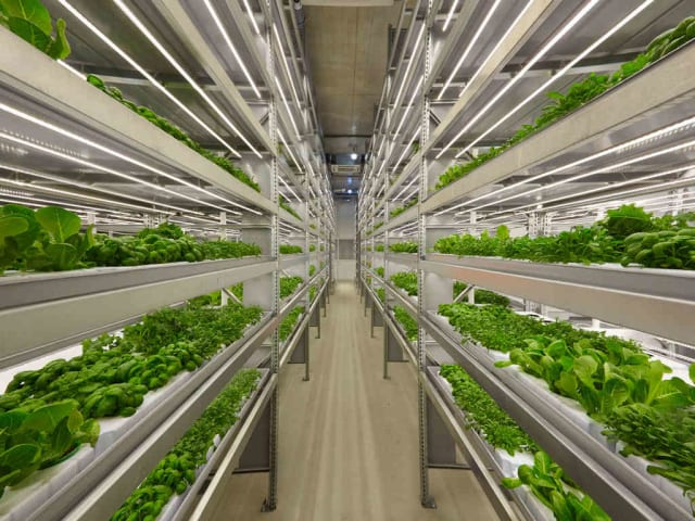 agritech vertical farming