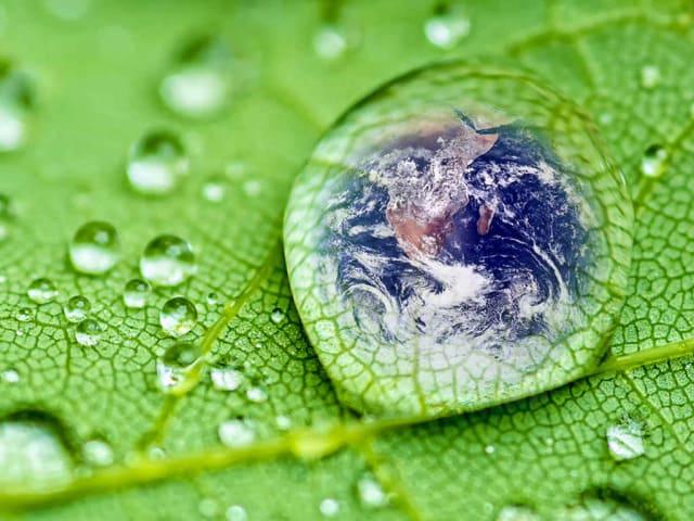 epson environmental vision