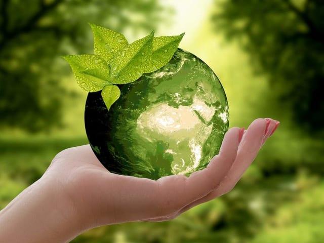ovs - abbigliamento sostenibile