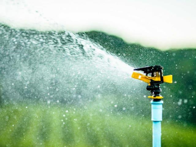 irrigare il giardino