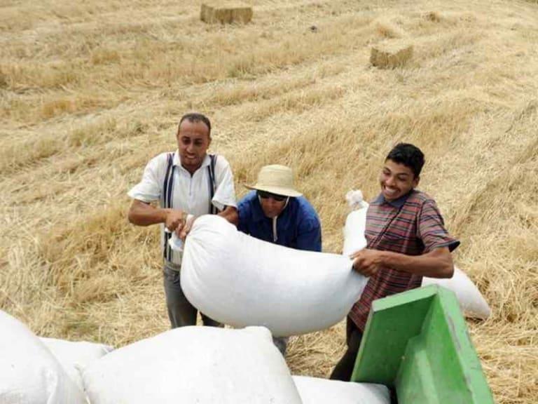 MADFORWATER, gestione delle risorse idriche in Tunisia