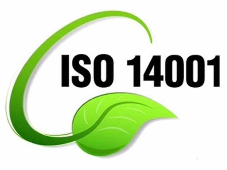 Rapporto biennale ISO 14001: benefici, costi e aspettative delle aziende italiane
