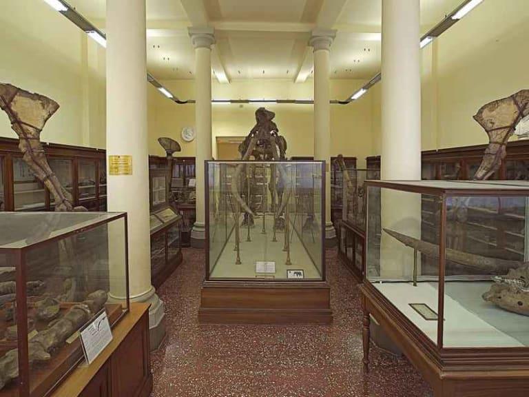 Illuminazione Led per i musei di Bologna