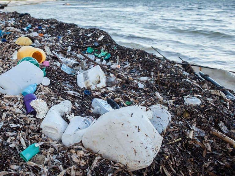 Proteggere l'ecosistema marino è fondamentale per la vita del Pianeta