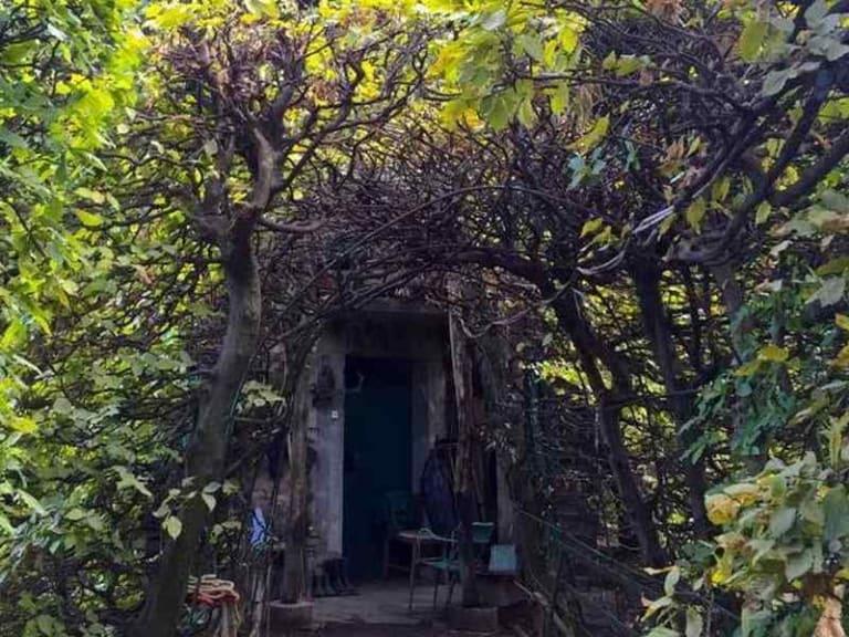 Green Tour, passeggiate verdi e giardini aperti