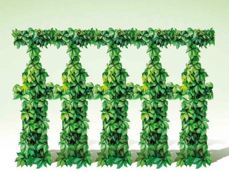 Cresce l'attenzione al green, ma non sempre e non per tutti