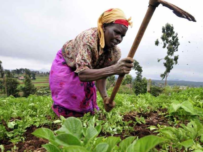 Sviluppo rurale in Africa: la Cia pronta a scendere in campo