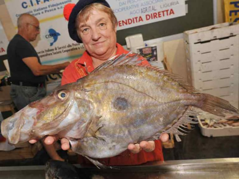 Slow Fish: quanto è sostenibile il mondo alimentare ittico?
