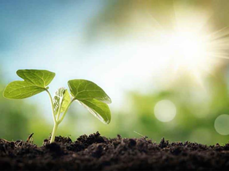 Tutela del territorio, fondamentale l'equilibrio con l'agricoltura