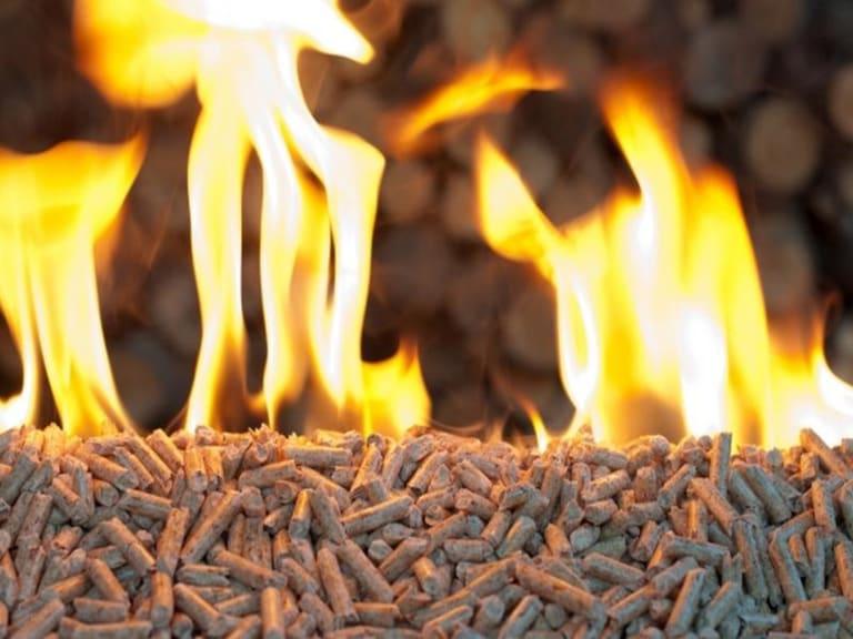 Ma, riscaldarsi con il legno fa bene all'ambiente?