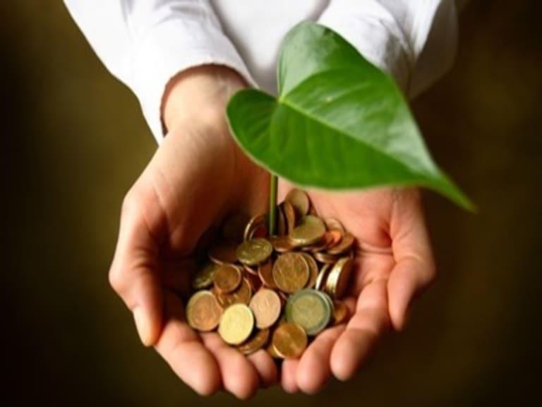 Green Economy: investimenti per 432mila imprese italiane negli ultimi 5 anni