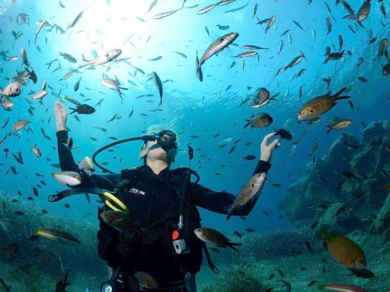 Giornata mondiale degli oceani: servono soluzioni innovative