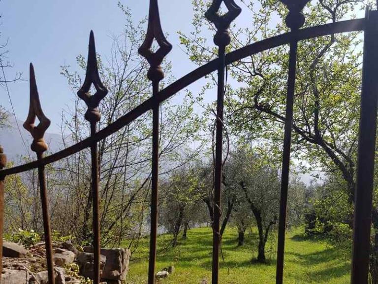 Piantiamo alberi con Garda (Gruppi e Associazioni Riunite a Difesa dell'Ambiente)