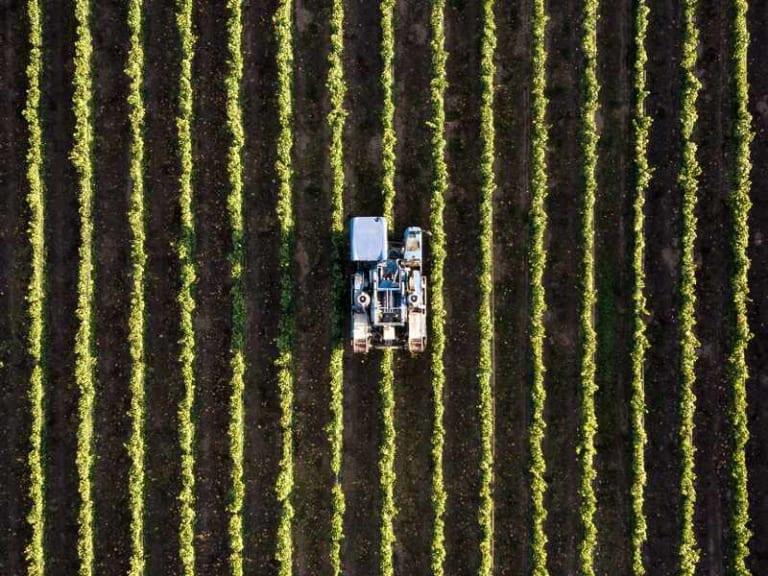 Il futuro dell'agroalimentare, tra agricoltura 4.0 e Internet of Farming