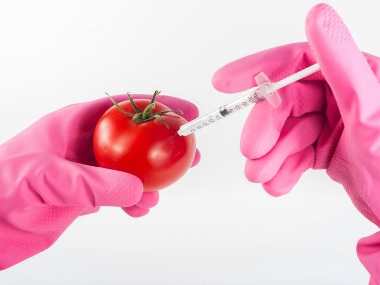 Functional food, quando l'economia circolare è funzionale al cibo