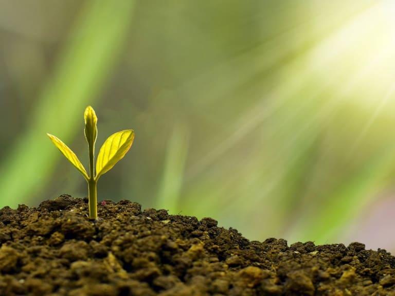 Economia di Comunità al centro del bando Eco di Fondazione Cariplo