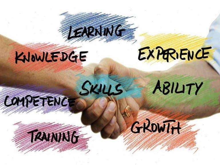 Mettere sostenibilità, soft skill e digitale nel proprio cv