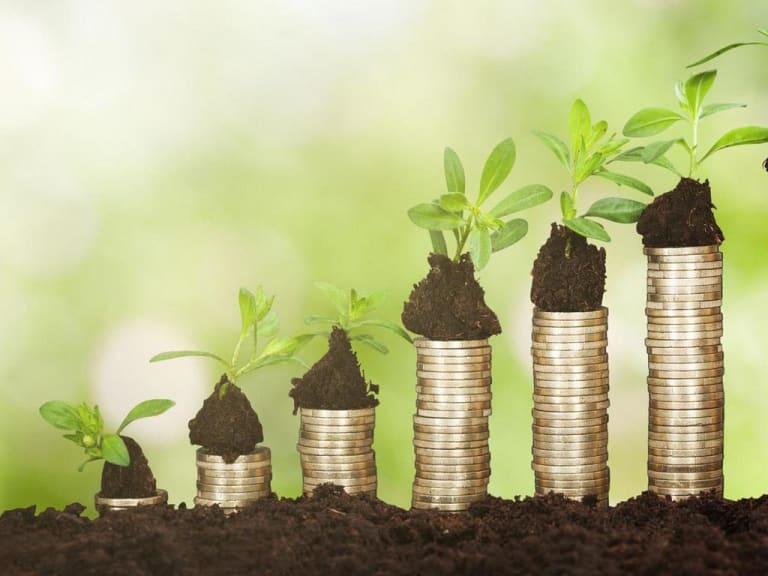 Bioeconomia circolare: agroalimentare, ambiente, energia ed economia circolare