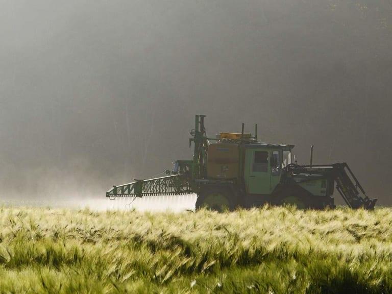 Pesticidi, quando li cerchi… purtroppo li trovi