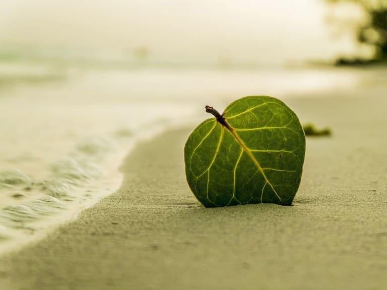 Isole italiane alla prova dei cambiamenti climatici