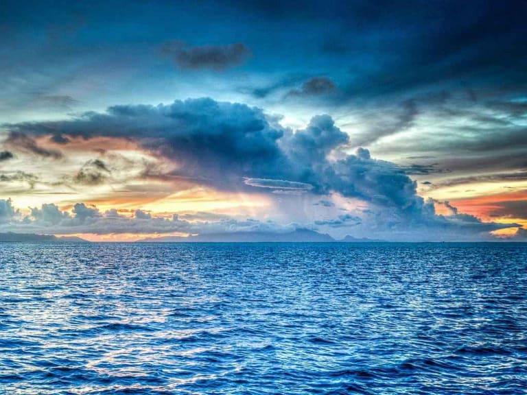 8 giugno: mille modi per saldare il nostro debito con gli oceani. Non solo oggi