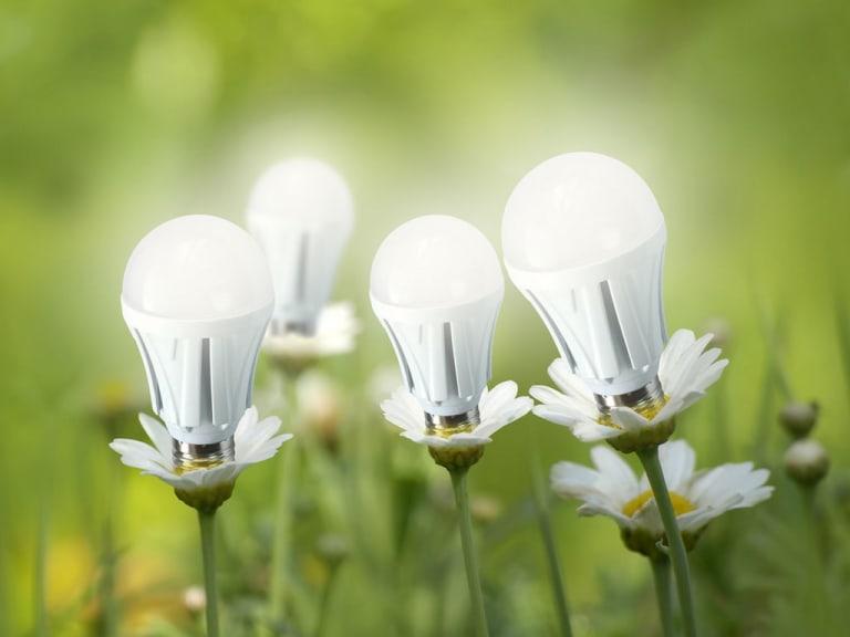Un futuro green grazie alle luci Led: è davvero possibile?