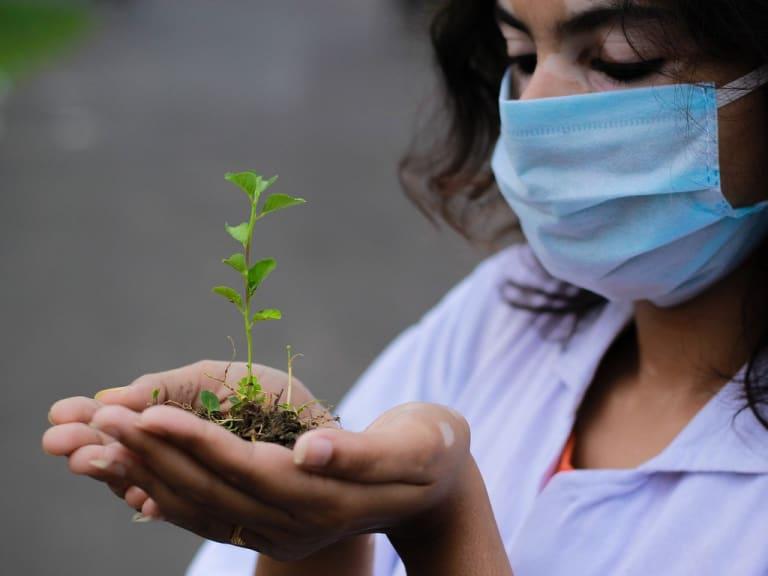 Ricerca agroalimentare in Italia: pubblicato il Crea Report 2020