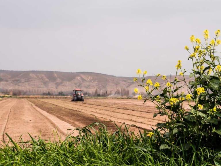 Amici della biodiversità, la certificazione per le aziende agrarie