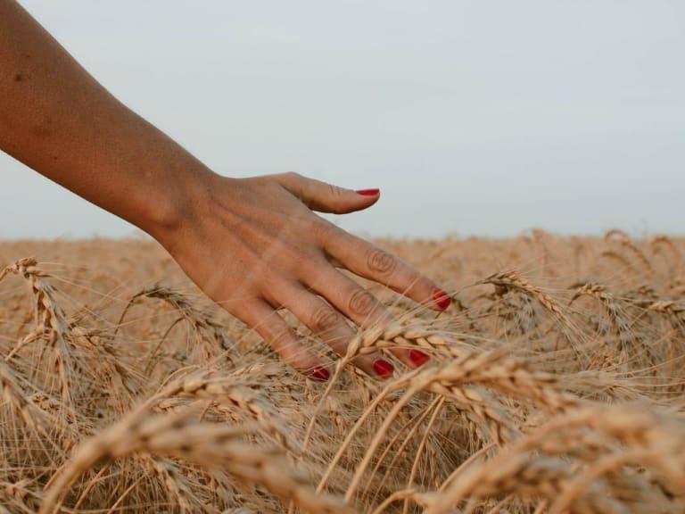 Le donne, motore dello sviluppo agricolo sostenibile e paritario