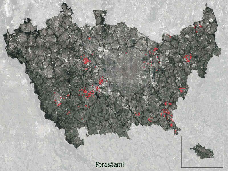 forestami - le aree selezionate