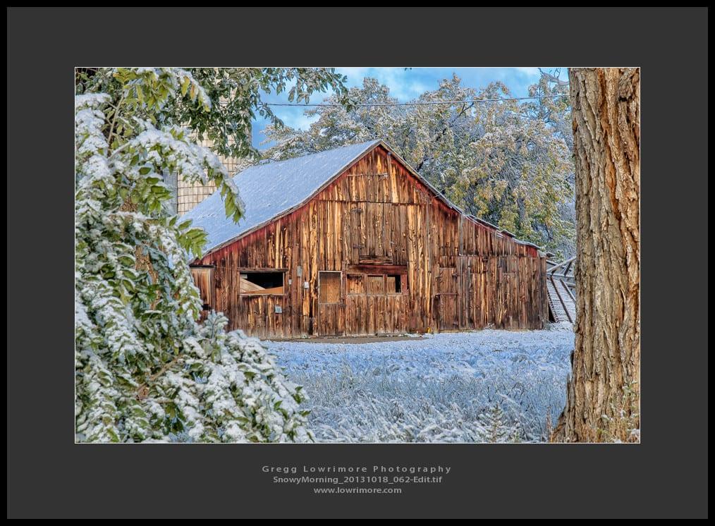 Snowy Morning 20131018 062