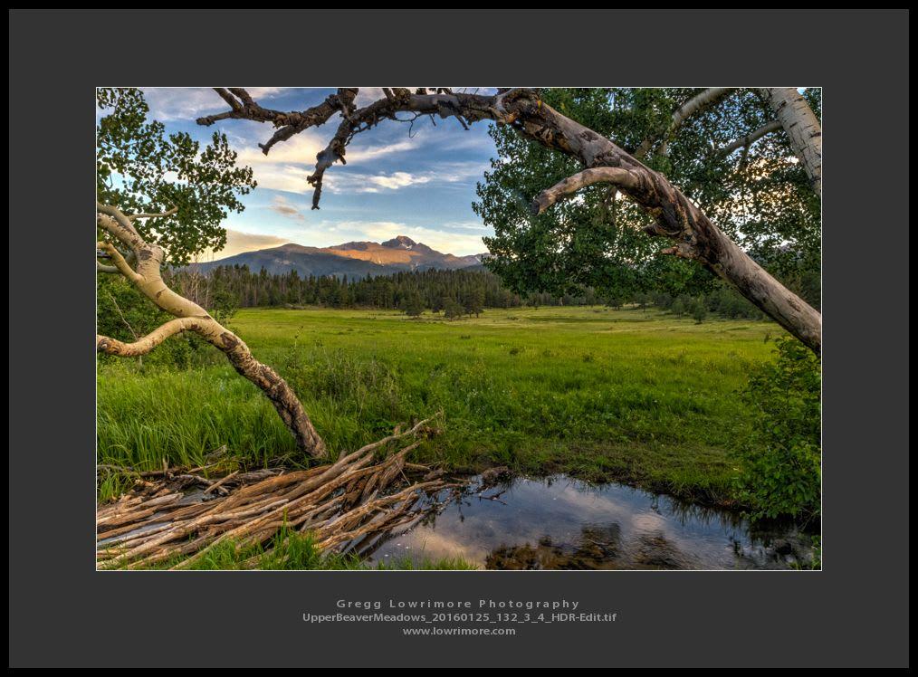 Upper Beaver Meadows 20160125 132_3_4_HDR