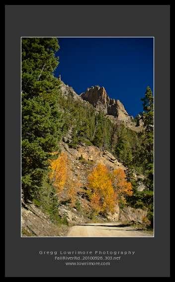 Fall River Rd 20100926 303