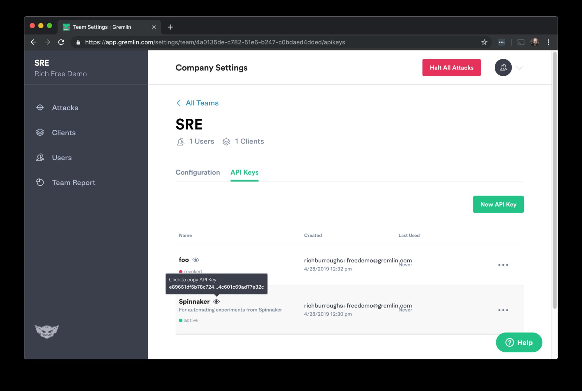 View API Key